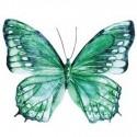 Set de tres mariposas decorativas en tonos verdes