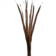 Set 10 hojas decorativas color marrón