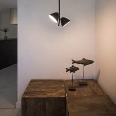 Lámpara de techo Flash LED dos luces en color negro