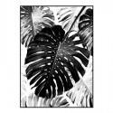 Cuadro impresión lienzo Hojas blanco y negro con marco